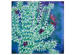 Semaphor Cactus