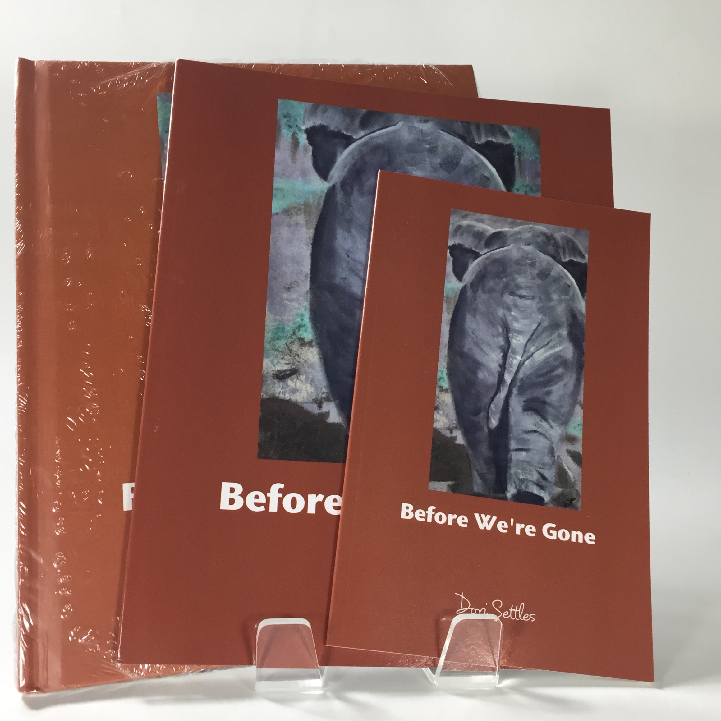 Before We're Gone - BOOK